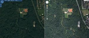 Bing vs. Google im Leipziger Auwald