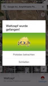 one Pokémon in Google Maps