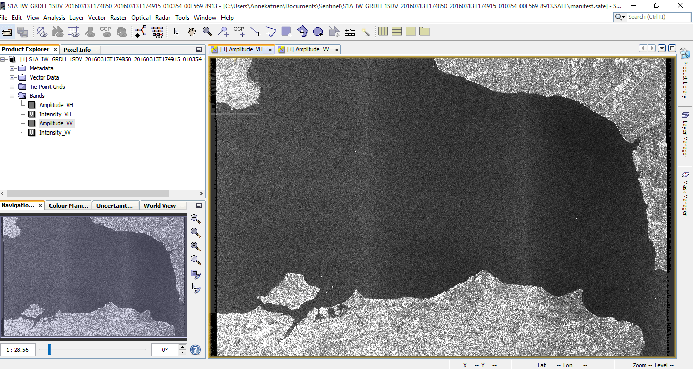 Open up a Sentinel-1 band to view the image.