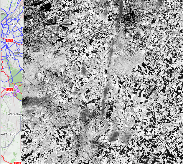 NDVI results in grayscale